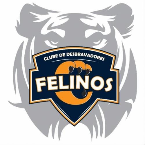FELINOS - PI