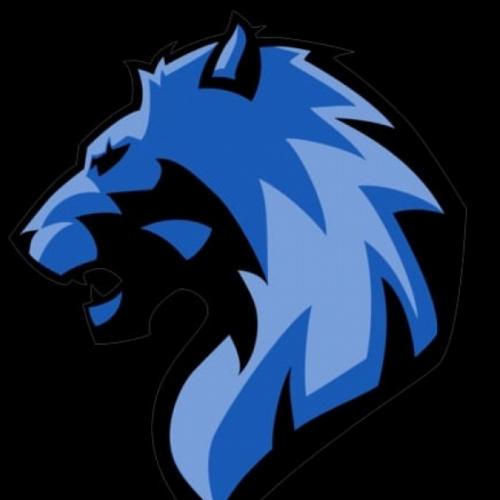 Leões do Campo