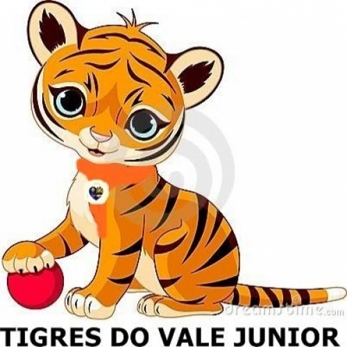 Tigres do Vale Junior
