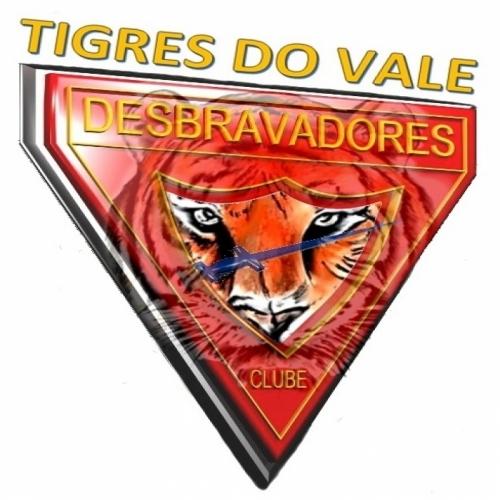 Tigres do Vale
