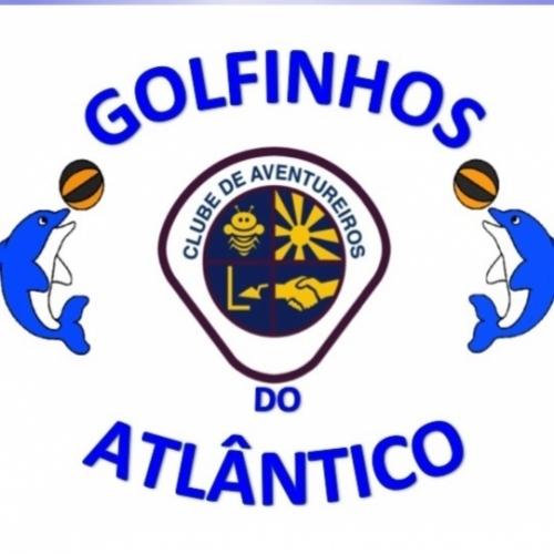 Golfinhos do Atlântico