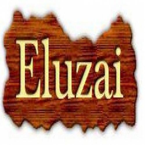 ELUZAI