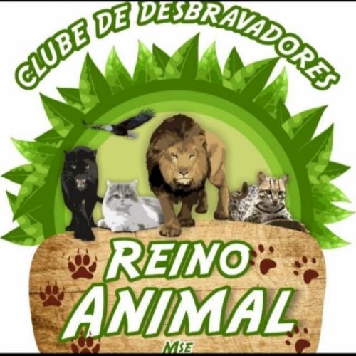 Reino Animal - CD