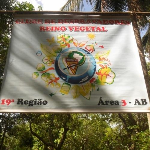 Reino Vegetal - DBV
