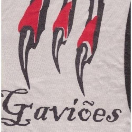 Gaviões