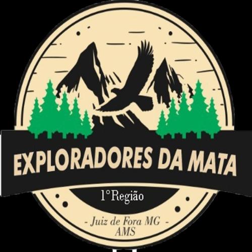 Exploradores da Mata