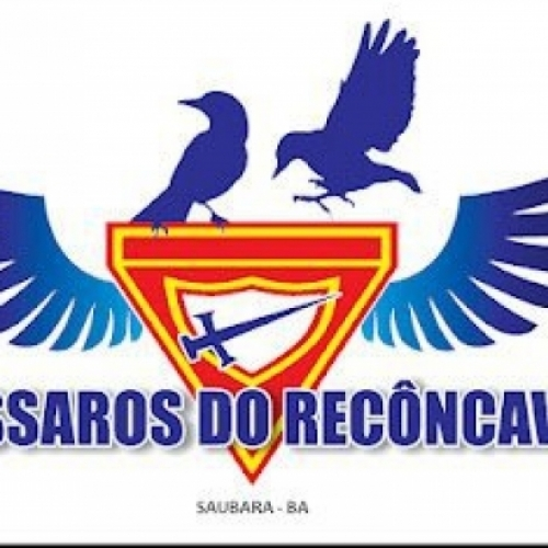 PÁSSAROS DO RECÔNCAVO