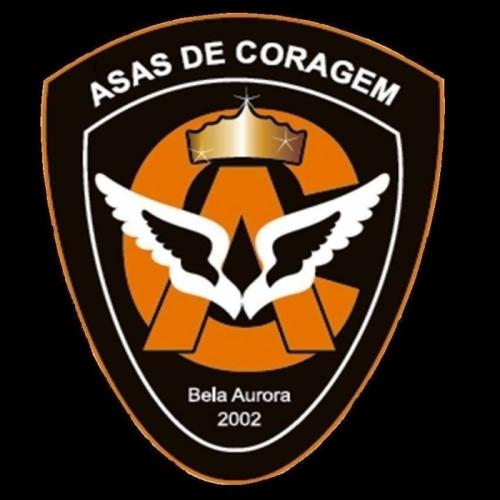ASAS DE CORAGEM
